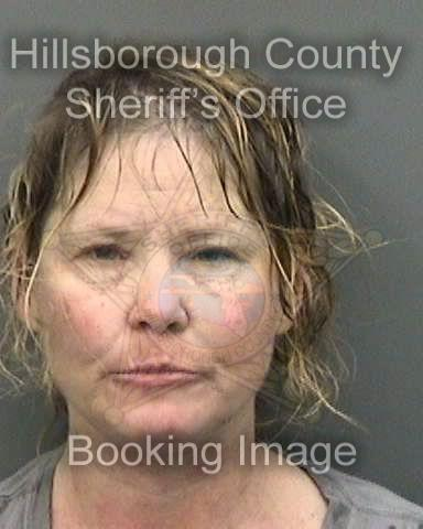 Hillsborough Woman Jailed After Attacking Deputies