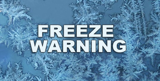 Temperatures Lowest In Decades – Freeze Warning