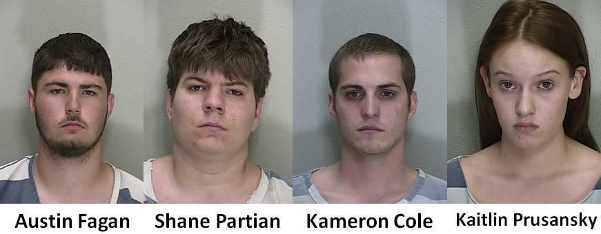 BB Gun shooters marion county, ocala news