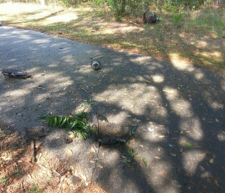 dunnellon motorcycle crash, ocala