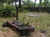 evergreen cemetery4 (2)