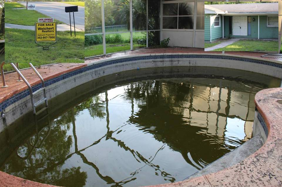 Marion Oaks Pool Home, mosquitoes