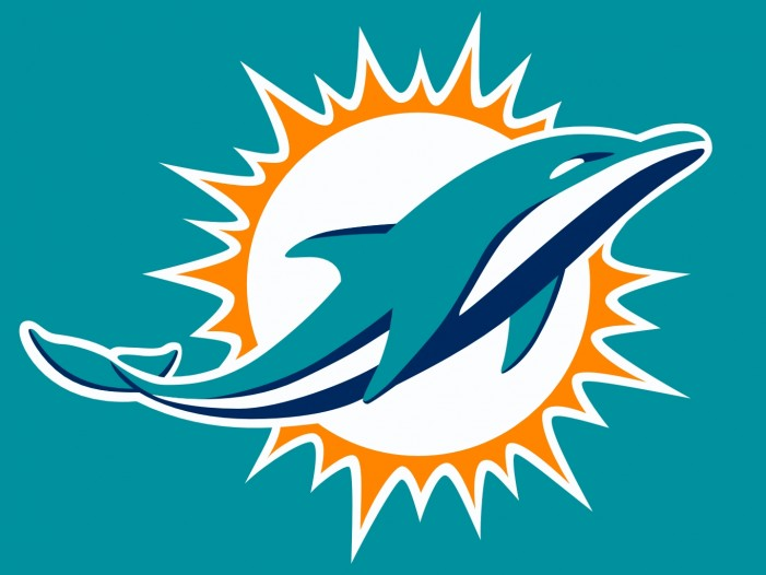 2014 Miami Dolphins preview