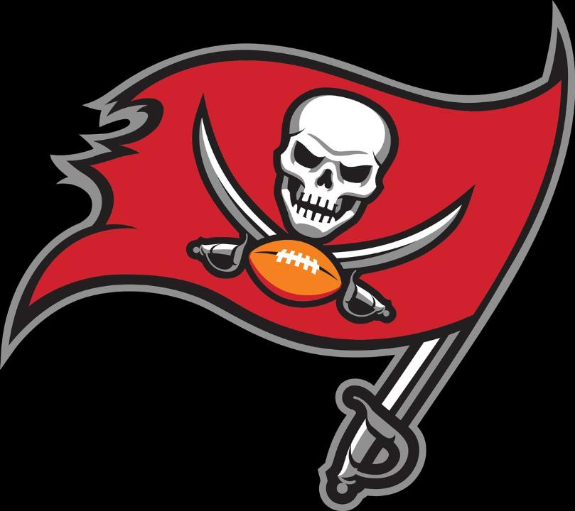 Tampa Bay Bucs, sports, nfl