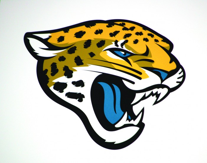 2014 Jacksonville Jaguars preview