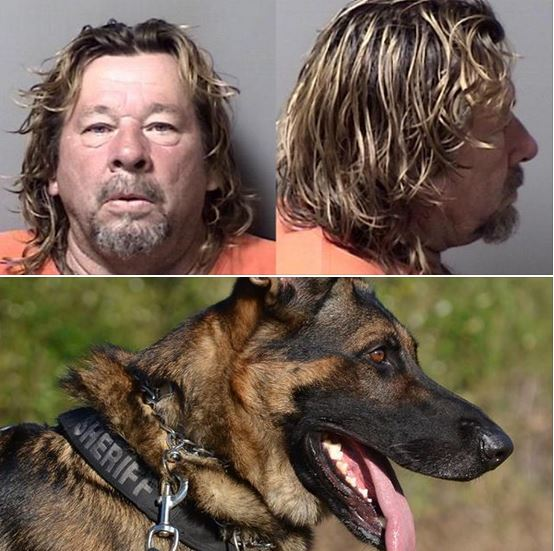 K-9 injured: Man attempts to smash woman's ankles with hammer