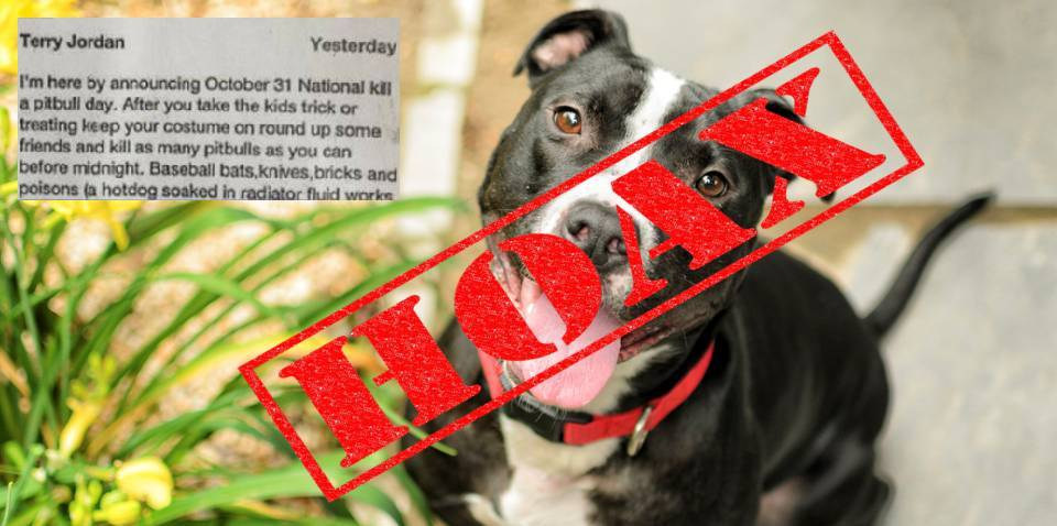Halloween National Kill a Pit Bull Day , ocala news, snopes, fake,