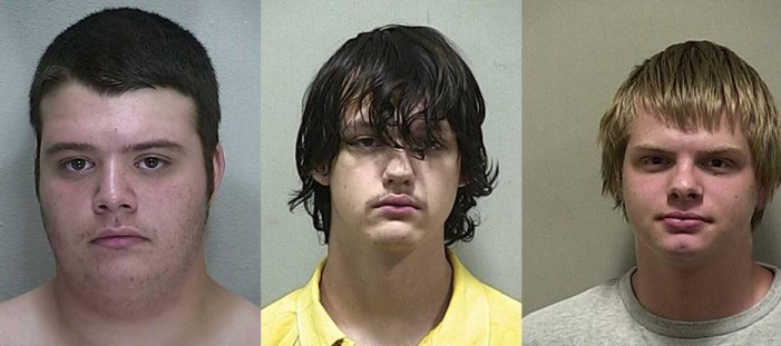 Teens identified in 90 burglaries, photos released