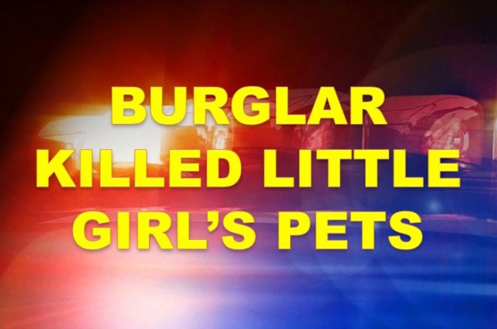 Home burglarized, girl's pets killed