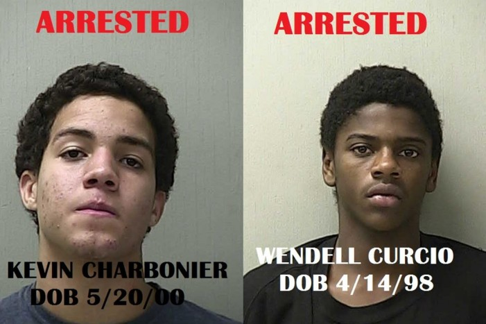 2 armed juveniles arrested after carjacking