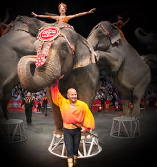 No more elephants for Ringling Bros. and Barnum & Bailey®