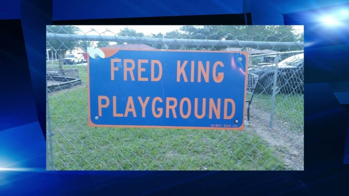 Warning to parents: local playground infested with ants