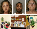 food stamps, polk county, davenport news, ocala news, florida, marijuana, credit card fraud