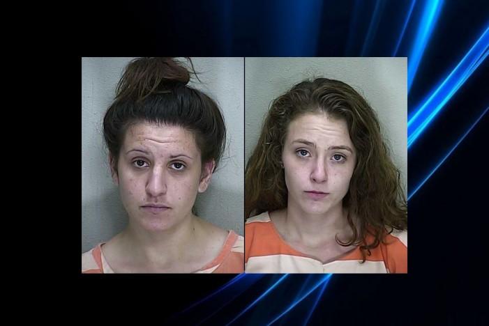 Felony warrant for woman yields two arrests