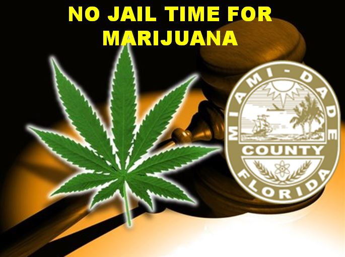 Florida county first to pass fine instead of jail time for marijuana