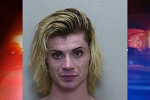 ocala news, male escort, marion county news, prostitute, florida,