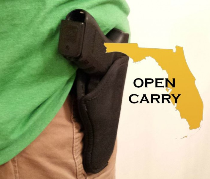 Open carry HB 163 passes first round in Florida
