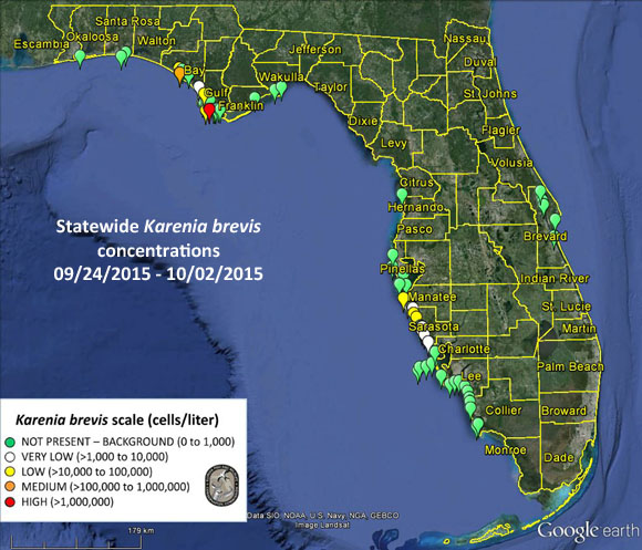 Red tide alert for 10-2-2015