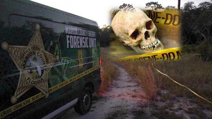Skeletal remains found in Ocklawaha