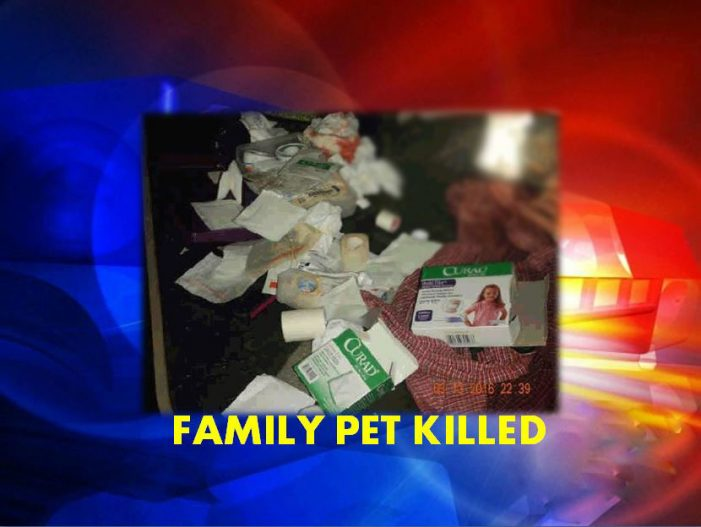 Man, drunk, cut throat of family pet