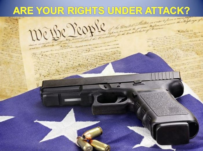 National Action Network takes aim at your right to keep and bear arms
