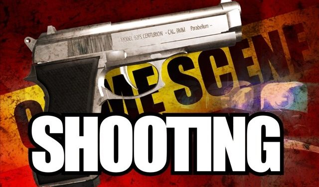 Resident shoots intruder who had defecated himself