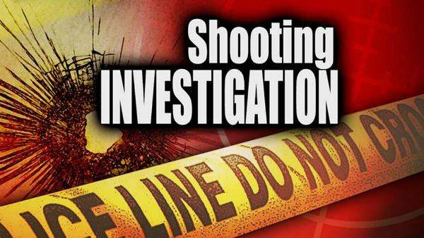 Man found shot to death in car