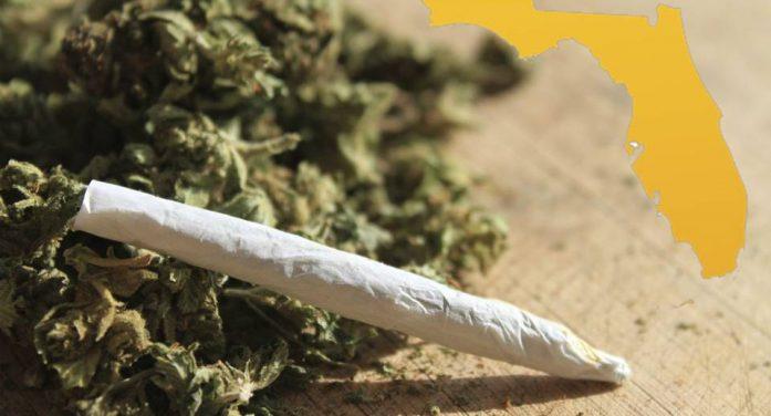 Bills would decriminalize marijuana in Florida