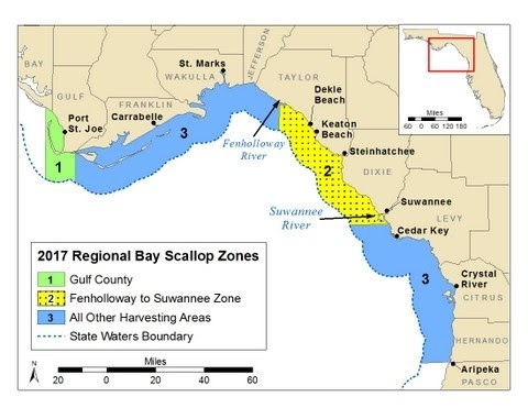 FWC: Gulf County bay scallop season postponed