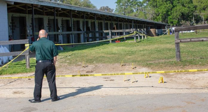 Body discovered at horse farm