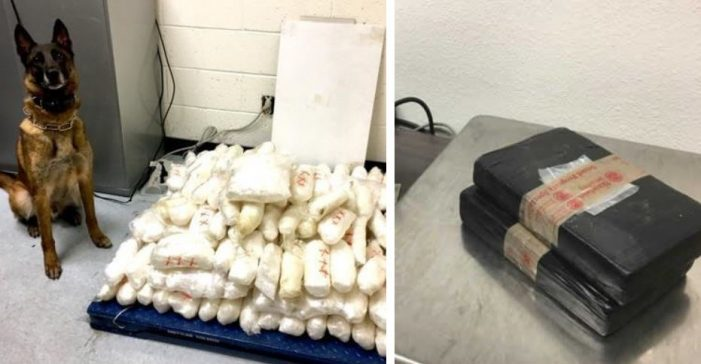 $4.1 million in drugs seized by Homeland Security