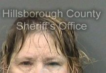 Tracy Hawley Ocala Tampa Hillsborough news attack