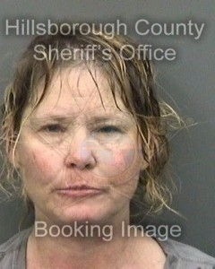 Tracy Hawley Ocala Tampa Hillsborough news attack
