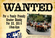 Cracker Cattle Drive, ocala post, marion county
