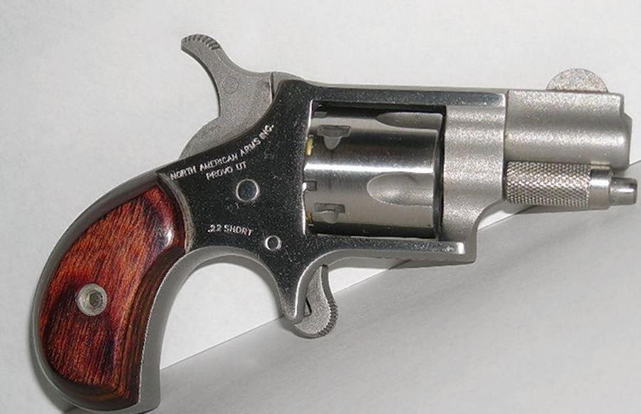 tennessee, gun in vagina