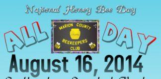honey bee, ocala, marion county