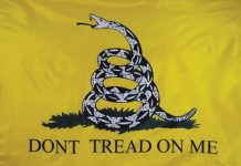 Gadsden flag, dont tread on me, ocala news, ocala city council,