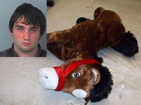 stuffed animal, sean johnson, brooksville, ocala news, ten sex with horse