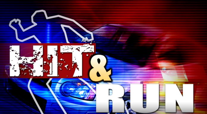 hit and run ocala, ocala news, car accident ocala,