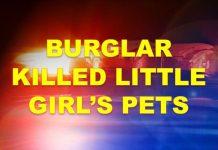 ocala news, marion county news, banner, burglar, pets killed, ocala