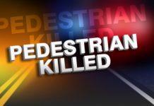 ocala news, pedestrian killed, accident