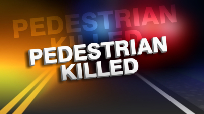 ocala news, pedestrian killed, accident