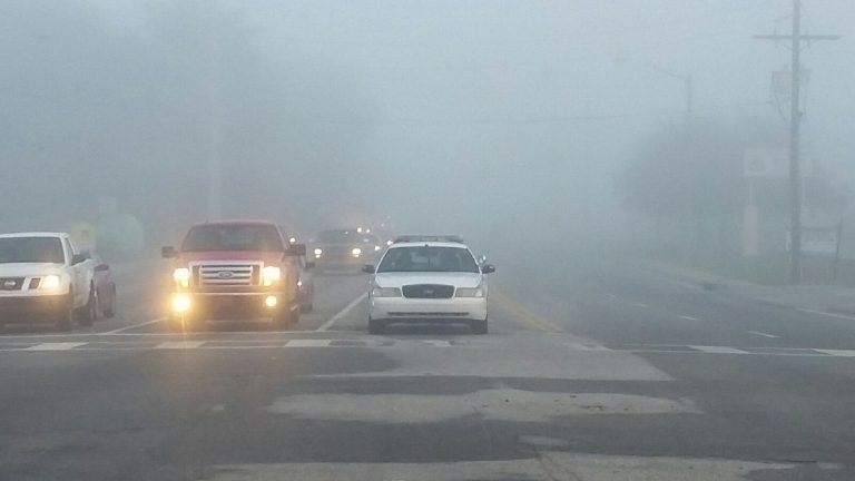 Fog: Drive with your headlights on; it's the law