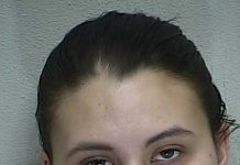 ocala news, walmart, Yezenia Degross, employee steals from walmart