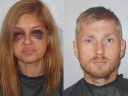 domestic violence, ocala news, florida, flagler county, news,