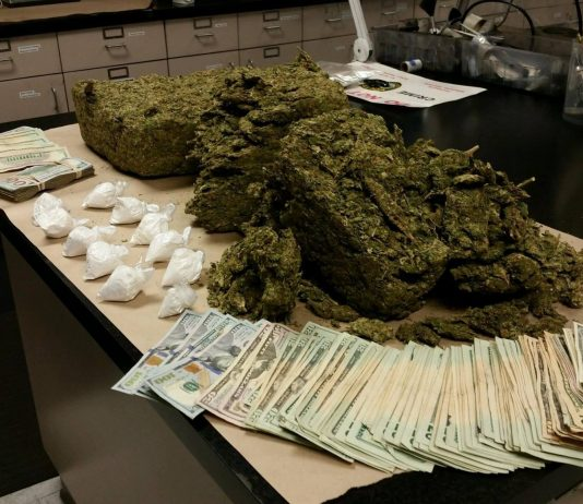 ocala news, drug bust, criminals