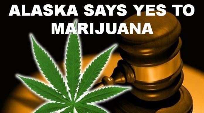 alaska marijuana, ocala news, pot, weed,