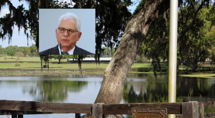 Glen Hill Farm, ocala news, trinity lane, corruption, farm land
