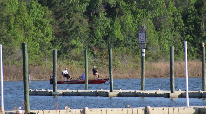 Lake weir, ocala news, ocklawaha, marion county news, beach reopens