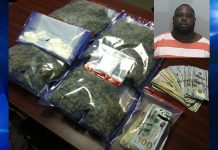 drugs, ocala news, marion county news, felons, guns,